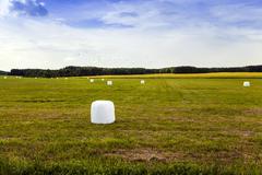 Harvesting grass.  in cellophane Stock Photos
