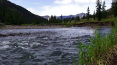 North Fork Shoshone River Seamless Loop Stock Footage