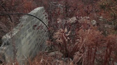 Broken Brick Wall in the Autumn Wood with Evening Fog Stock Footage
