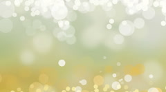 Autumn  White Background Loop Chamomile Fairy Magic Soft Defocused Stock Footage
