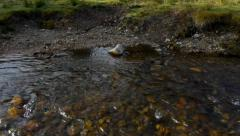 Military cross barefoot a mountain river 41c Stock Footage