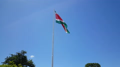 Flag from Suriname Stock Footage