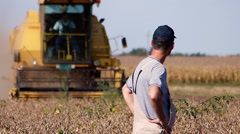 Middle age farmer at soybean field during harvesting. - stock footage