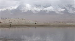 Lake & mountains, cattle, Xinjiang, China - stock footage