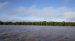 Commewijne river in Suriname in the morning Stock Footage