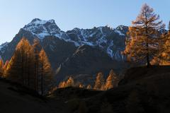 Autumn colors at the Devero Alp - stock photo