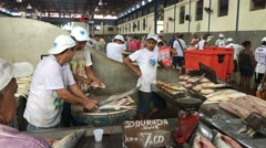 Inside the famous Ver Peso Market in Belem do Para, Brazil Stock Footage