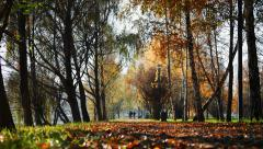 People walk along a path in autumn park in the distance Stock Footage