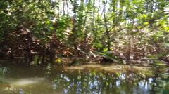 Cruising through a small river Stock Footage