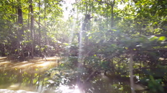 Cruising through a small river part of the Commewijne river Stock Footage