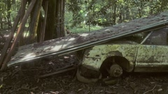 Wrecked car in the jungle Stock Footage