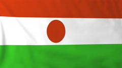 Flag of Niger waving in the wind, seemless loop animation - stock footage