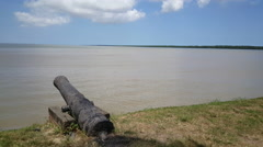 Canon at the Suriname River Stock Footage