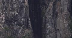 Sea birds in front of crack in ocean side cliff - stock footage