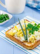 Breakfast sandwich with chopped eggs and verdure - stock photo