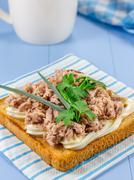 Breakfast sandwich with tuna fish and verdure Stock Photos