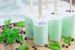Stock Photo of Mint and chocolate chips yogurt popsicles in molds