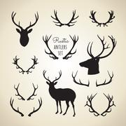 Rustic Antlers Set - stock illustration