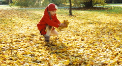 Happy girl child throws up leaves in the park in the autumn and laughing at c - stock footage