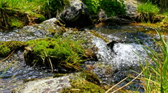 Fast flowing water of a mountain river, tourist legs passing over it Stock Footage