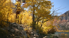 Stock Video Footage of 3 axis Motion Time Lapse of Alpine Lake & Golden Aspens Fall Foliage -Zoom Out-