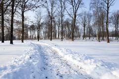 winter road.  track. - stock photo