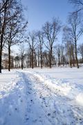 small road . winter. - stock photo