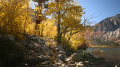 3 axis Motion Time Lapse of Alpine Lake & Golden Aspens Fall Foliage  - stock footage