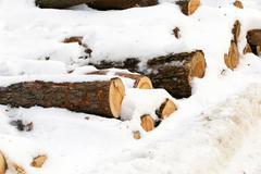 Stock Photo of winter season.   snow