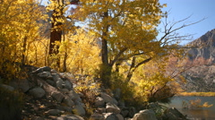 3 axis Motion Time Lapse of Alpine Lake & Golden Aspens Fall Foliage -Long Shot- Stock Footage