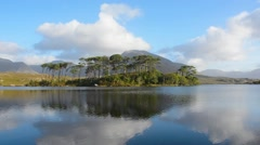 Pine Island, Connemara National Park, Ireland Stock Footage