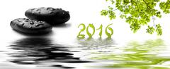 card happy new year 2016 with raindrops on black pebbles and maple tree - stock photo
