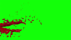 Hd Blood Burst Slow Motion (Green Screen) 96 Stock Footage