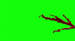 Hd Blood Burst Slow Motion (Green Screen) 181 - stock footage