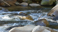 River rapids Stock Footage