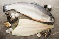 fish and shellfish - stock photo