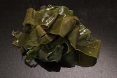 edible sea kelp - stock photo