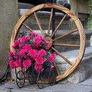 Flowered wagon with antique old wheel Stock Photos