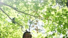 4K Attractive African American woman exploring in the woods Stock Footage