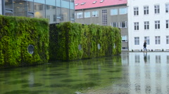 Reykjavik Iceland downtown green moss growing on water at City Hall Stock Footage