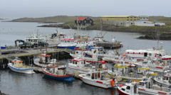 Iceland Djupivogur fishing village marina with colorful fishing boats in port Stock Footage