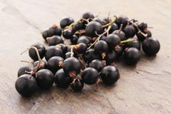 fresh seasonal berryfruit - stock photo