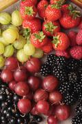 Fresh seasonal berryfruit Stock Photos