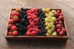 Seasonal berry fruit Stock Photos