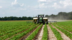 Colfax Louisana cotton fields rows of cotton farming with tractor spraying Stock Footage