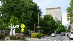Asheville North Carolina traffic on Patton Avenue downtown at Pritchard Park Stock Footage
