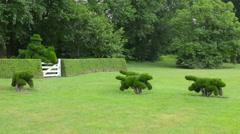 Ladew Toptary Gardens Maryland beautiful sculptured plants dogs hunter, steeple Stock Footage