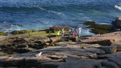 Acadia National Park near Bar Harbor Maine rocks with tourists at Thunder Hole Stock Footage