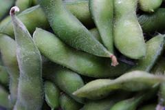 Fresh soya beans Stock Photos