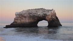 Natural Bridges. Santa Cruz, California Stock Footage